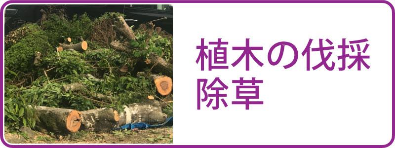 植木の伐採・除草